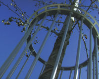 Metal Tree Guard Fences