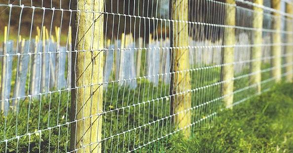 Stock Fences