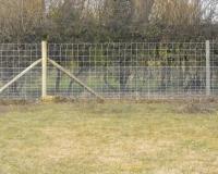 Anti Rabbit Fences